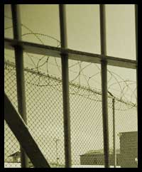 Algunas realidades en torno a la prisión